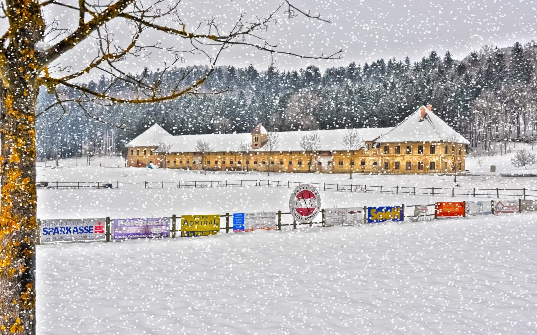 Winter im Meierhof