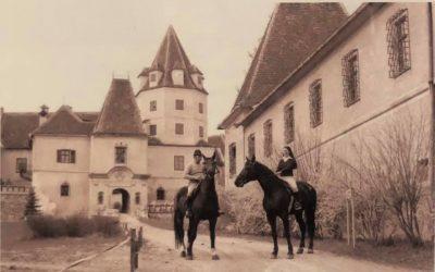 Schlossführung ONLINE
