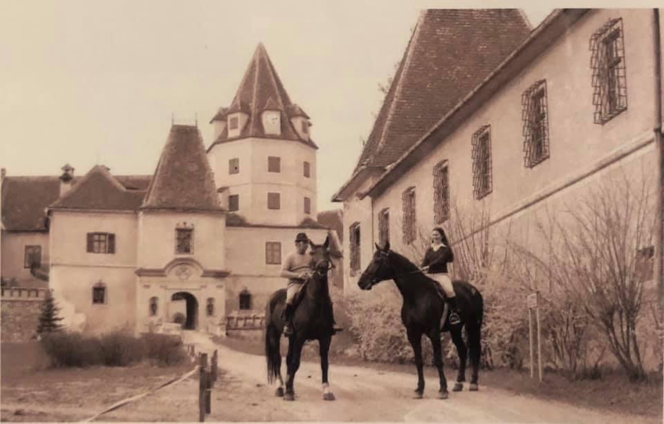 ONLINE Schlossführung - Reitclub