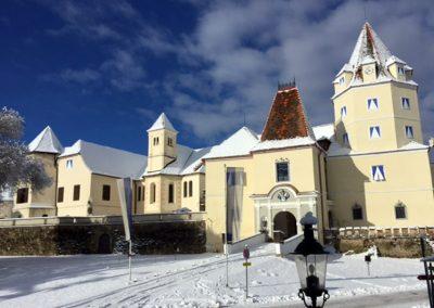 Winter Schloss Kornberg